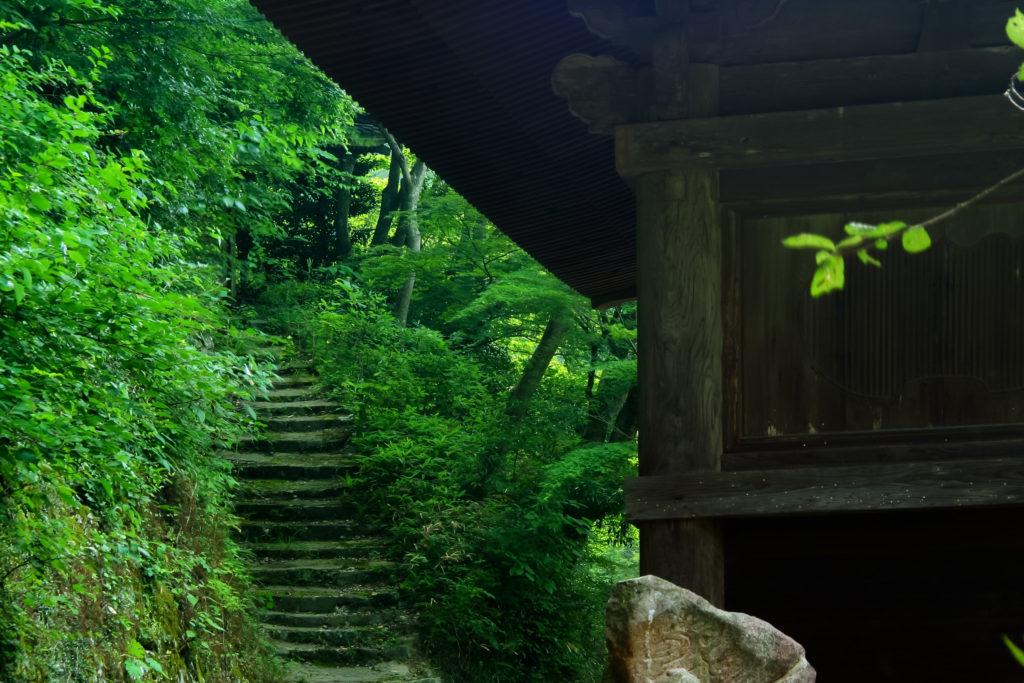 お寺の参道